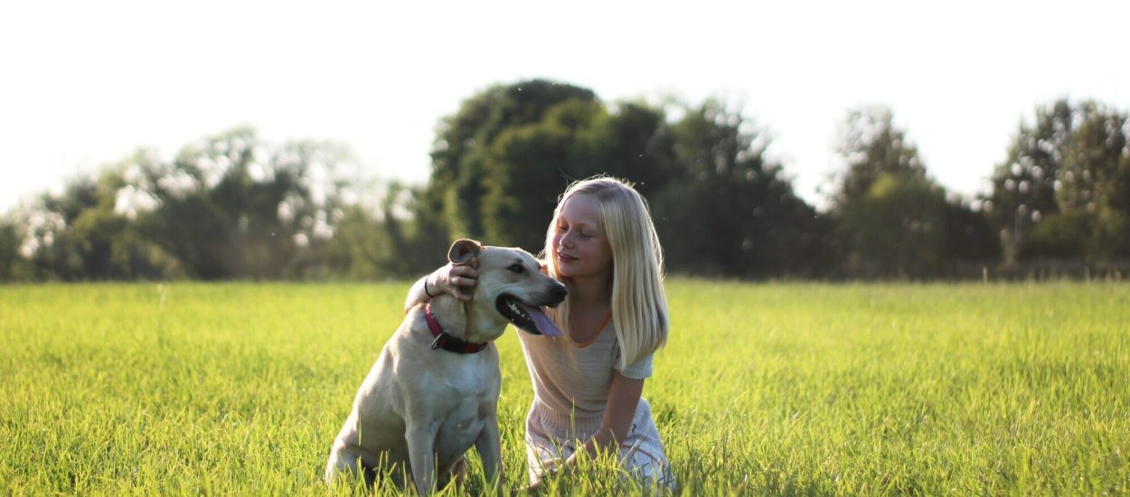 Why Young Children and Dogs Should Never Be Left Unattended